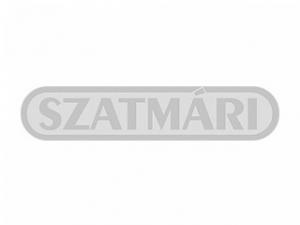 http://bau-ja.hu/Szatmári