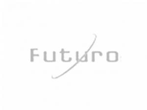 http://bau-ja.hu/Futuro